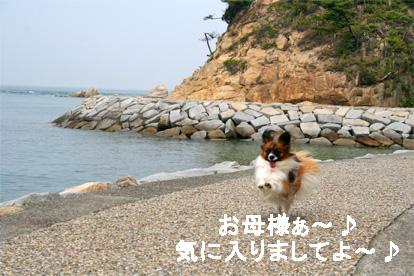 yuzu070511-2.jpg