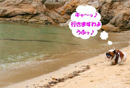 yuzu070511-4.jpg