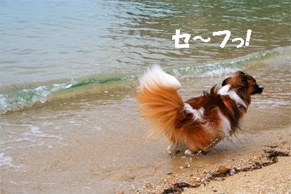 yuzu070511-6.jpg