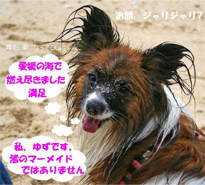 yuzu070512-1.jpg