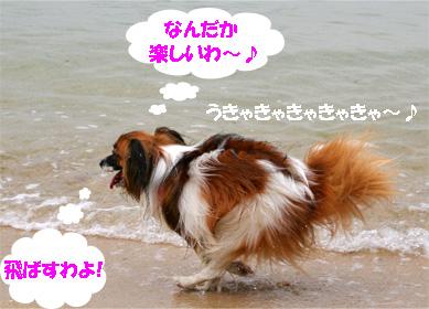 yuzu070512-2.jpg