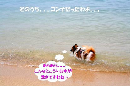 yuzu070512-3.jpg