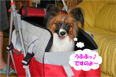 yuzu070706-4.jpg