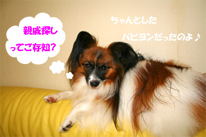 yuzu070711-2.jpg
