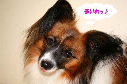 yuzu070711-4.jpg
