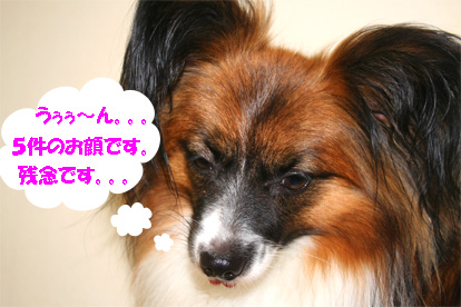 yuzu070711-5.jpg