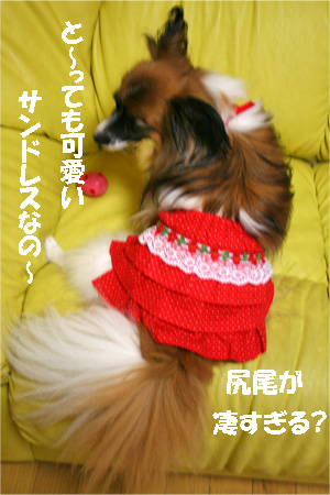 yuzu070712-2.jpg