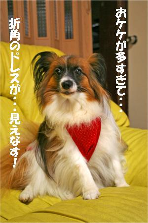 yuzu070712-3.jpg