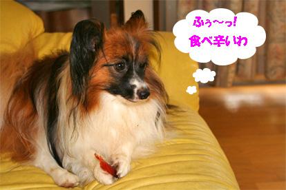 yuzu070719-3.jpg