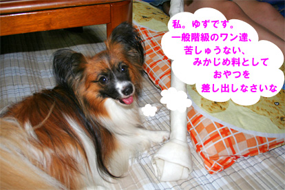 yuzu070816-1.jpg