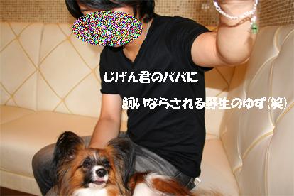 yuzu070821-2.jpg