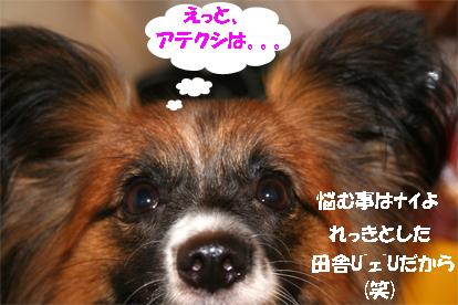 yuzu070821-3.jpg