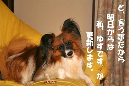 yuzu070828-1.jpg
