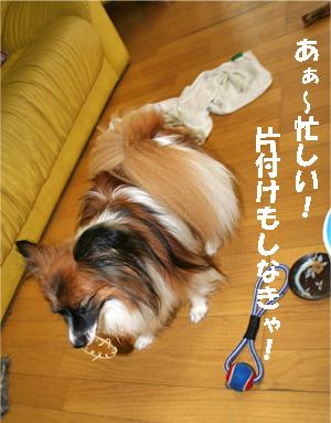 yuzu070828-2.jpg