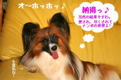 yuzu070830-2.jpg