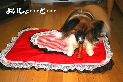yuzu070904-2.jpg