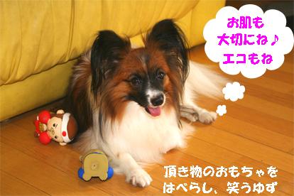 yuzu070919-1.jpg