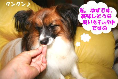yuzu071003-1.jpg