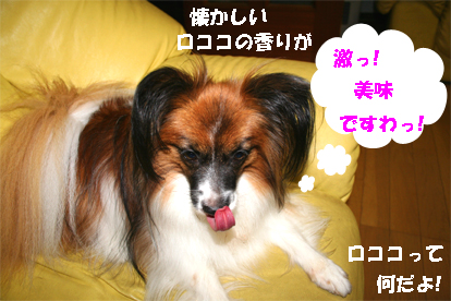 yuzu071003-4.jpg