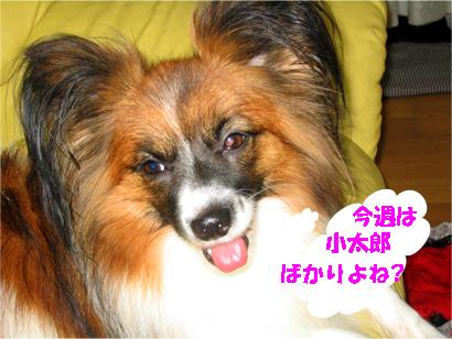 yuzu071010-1.jpg