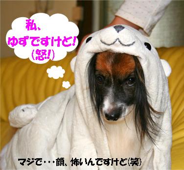 yuzu071015-2.jpg