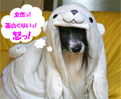 yuzu071015-3.jpg