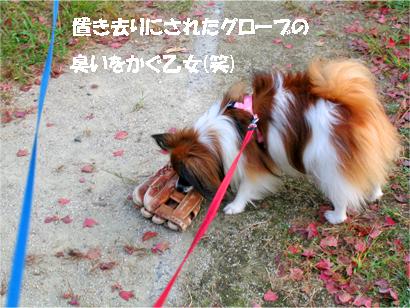 yuzu071016-1.jpg