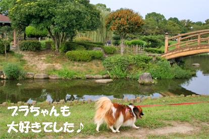 yuzu071017-1.jpg