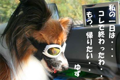 yuzu071020-2.jpg