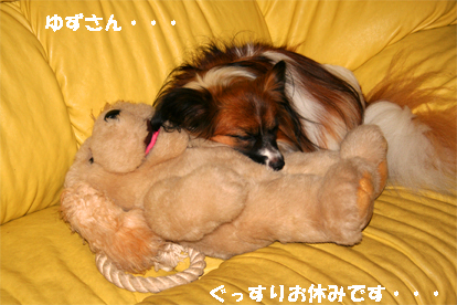 yuzu071028-1.jpg