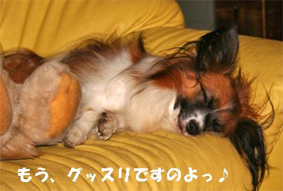 yuzu071031-1.jpg