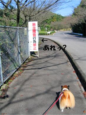 yuzu071106-8.jpg