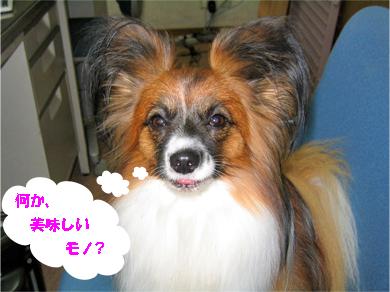 yuzu071107-3.jpg