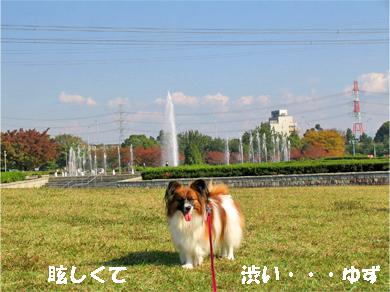 yuzu071108-3.jpg
