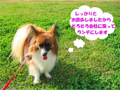 yuzu071114-4.jpg