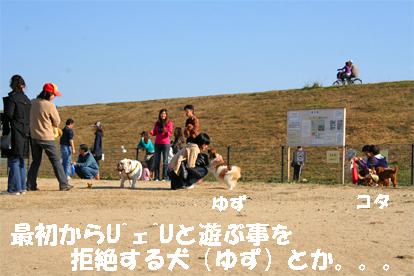 yuzu071126-1.jpg