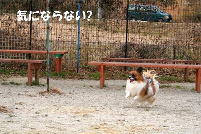 yuzu080202-1.jpg