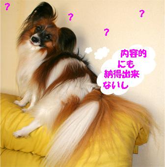 yuzu080228-3.jpg