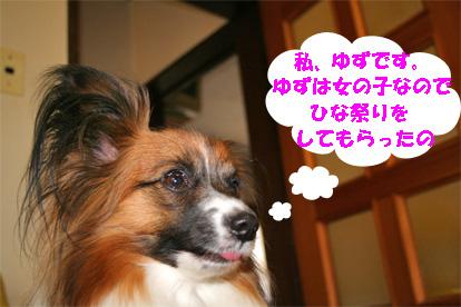 yuzu080303-1.jpg