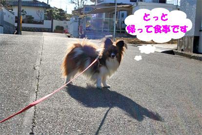 yuzu080305-2.jpg