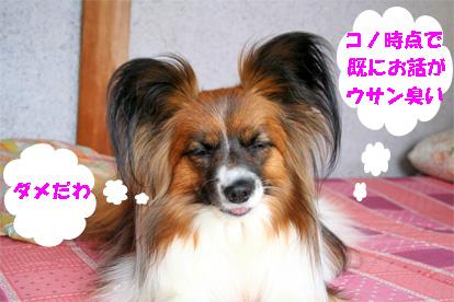 yuzu080321-3.jpg