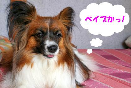 yuzu080321-4.jpg
