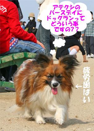 yuzu080408-2.jpg