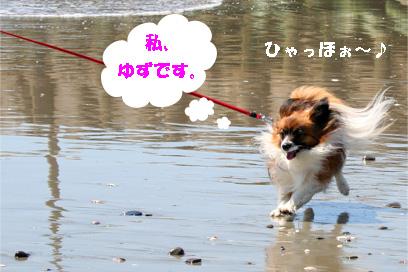 yuzu080421-1.jpg