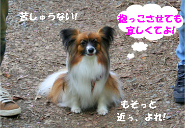 yuzu080502-2.jpg