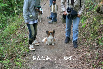 yuzu080502-3.jpg