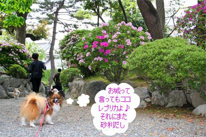 yuzu080503-1.jpg