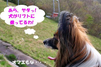 yuzu080507-2.jpg
