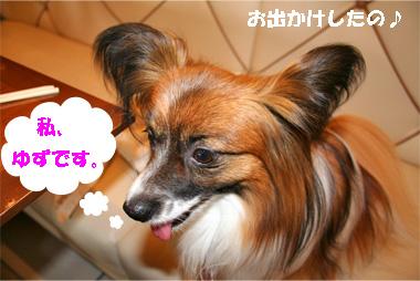 yuzu080521-1.jpg
