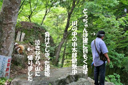 yuzu080612-1.jpg